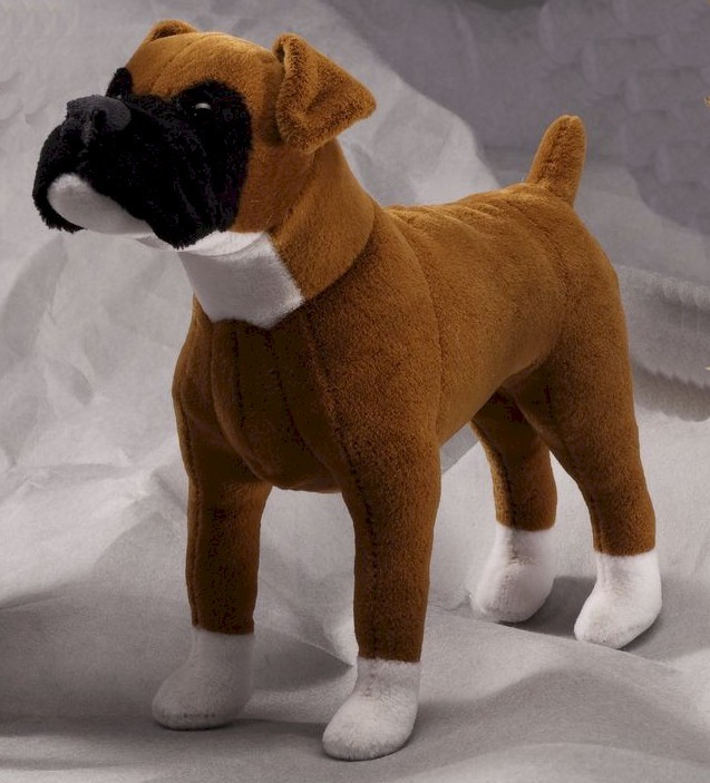 Pics Photos - Dog Ready For Adoption Australian Cattle Dog Blue Heeler ...